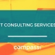 The Best IT Consulting Services